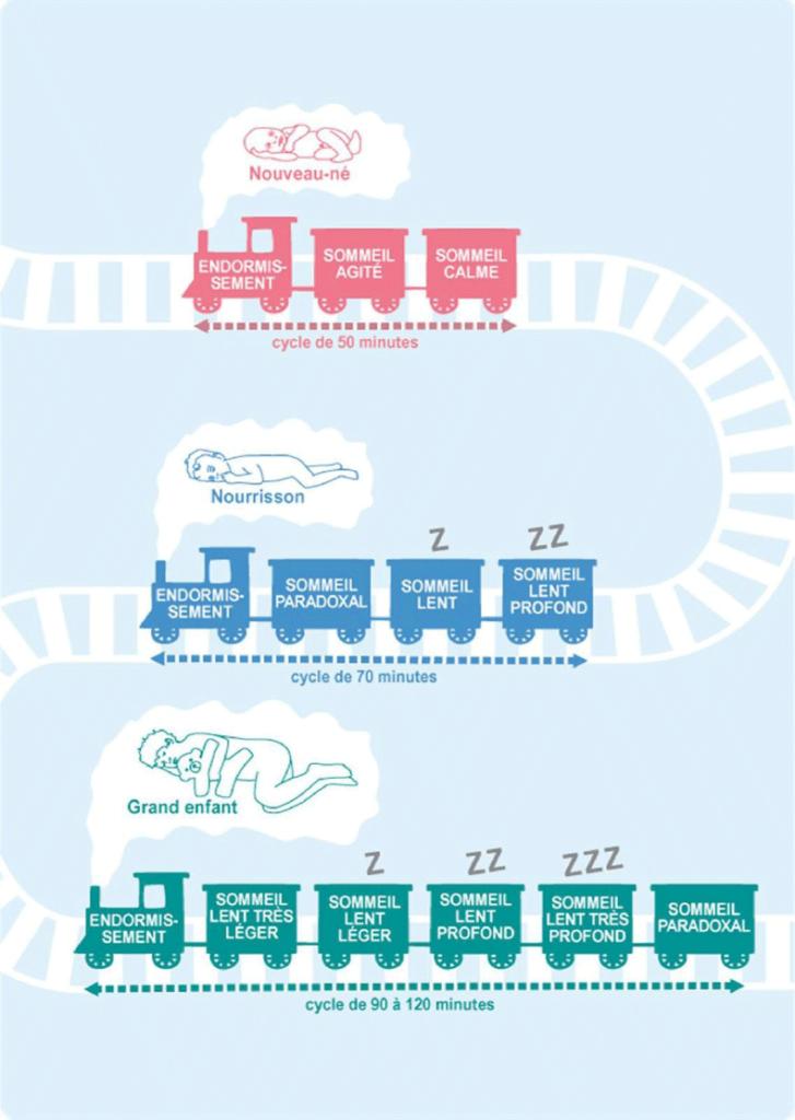 Cycle du sommeil du nouveau-né jusqu'au grand enfant