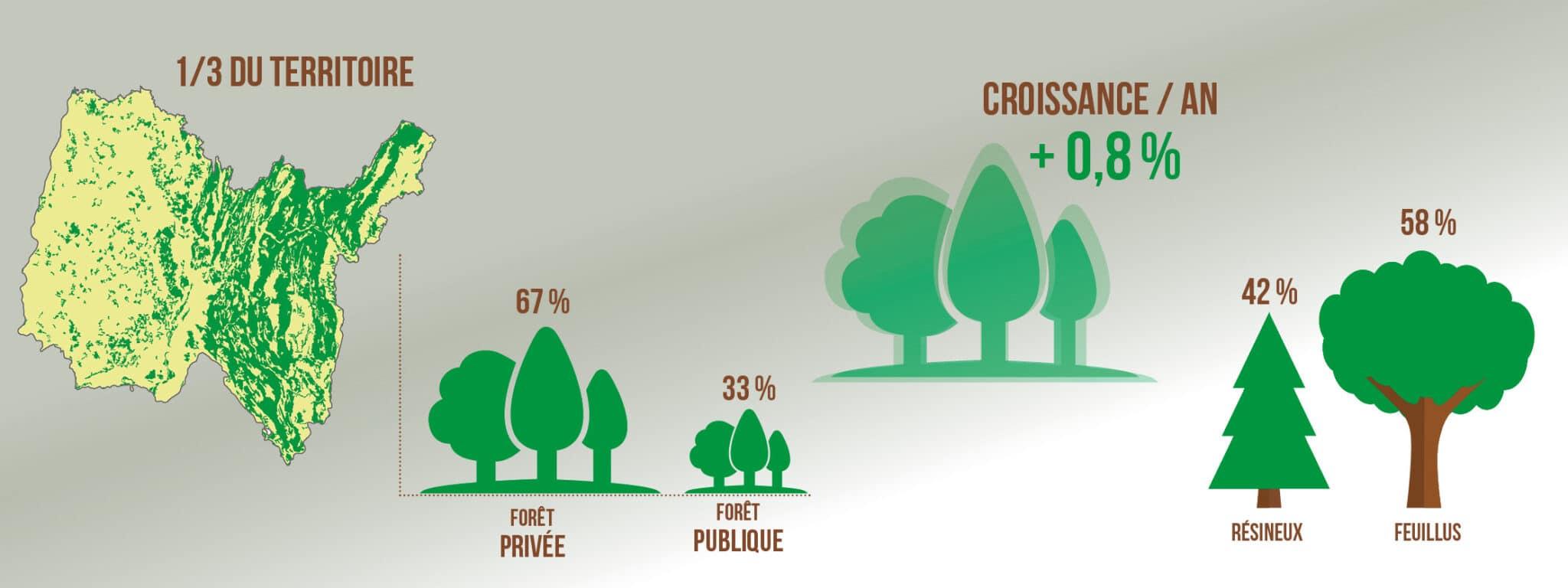 La forêt aindinoise en chiffres 2021