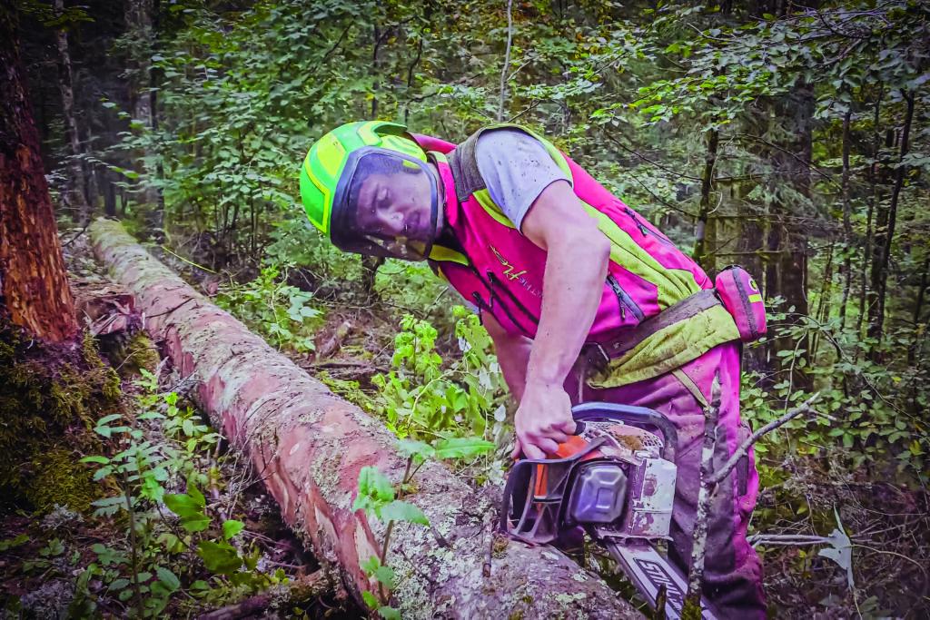 Bastien Hell Jeune entrepreneur Bucheron Forêt Ain Petit Abergement